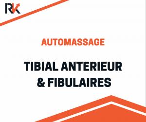 automassage tibial antérieur & fibulaires