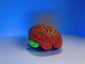 neuro-training luxembourg